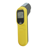 IR2 Infrared Non-Contact Thermometer